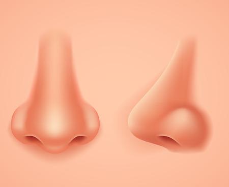 Przedni profil Human Nose Realistyczne Tło Izolowane 3d Ilustracja wektorowa projektu