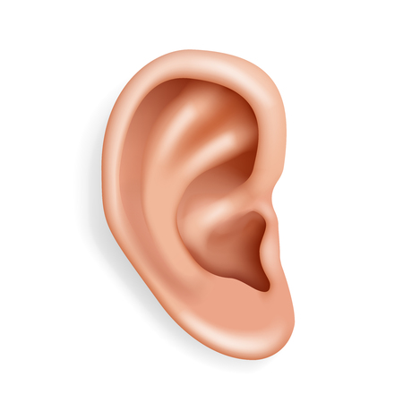 Human ear organ hearing health care closeup 3d realistic isolated icon design vector illustration