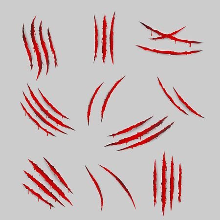 Bleeding scratches monster animal claws torn material blood set isolated design vector illustration