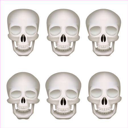 Realistic human skulls set isolated 3d vector illustration