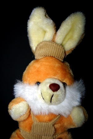 Teddy bunny Lizenzfreie Bilder