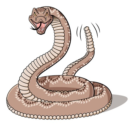 Illustration of cartoon rattlesnake isolated on white background.