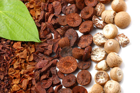 rows of betel nuts with betel leaf Stock Photo - 4899473
