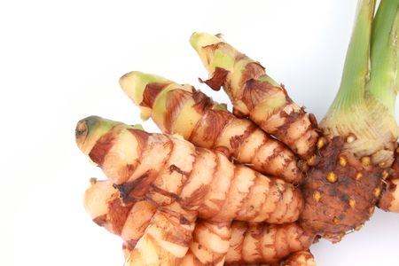 root vegetable: raw turmeric plant