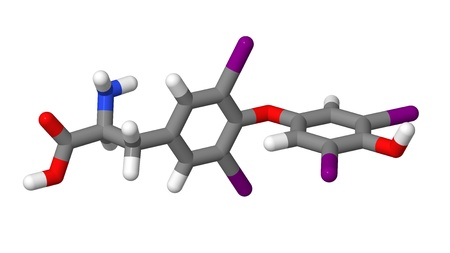Thyroxine  T4  sticks molecular model Stock Photo