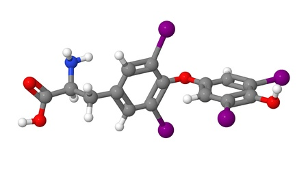 Thyroxine  T4  molecular model Stock Photo - 15112161