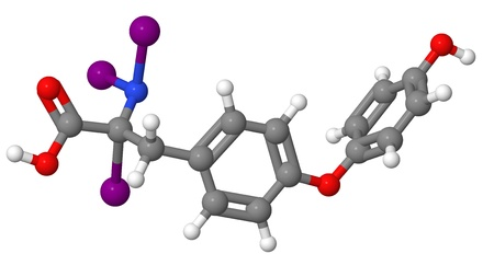hypothyroidism: Triiodothyronine  T3  molecular model