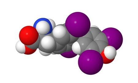 Thyroxine (T4) CPK spacefill molecular model Stock Photo