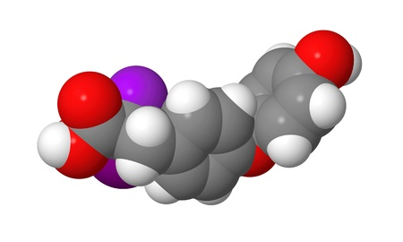 Triiodothyronine (T3) CPK spacefill molecular model Stock Photo - 15393004