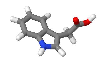 elongacion: Hormona vegetal - Auxinas - indol-3-ac�tico (IAA) - palos modelo molecular Foto de archivo