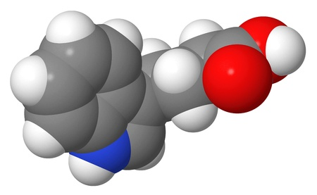 apical: Plant hormone - Auxins - Indole-3-butyric acid  IBA  - spacefill molecular model