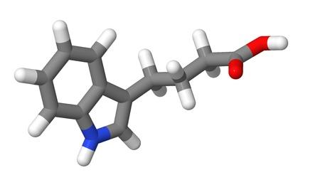 alargamiento: Hormona vegetal - Auxinas - indol-3-but�rico IBA - palos modelo molecular Foto de archivo