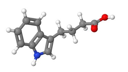 apical: Plant hormone - Auxins - Indole-3-butyric acid  IBA  - molecular model Stock Photo
