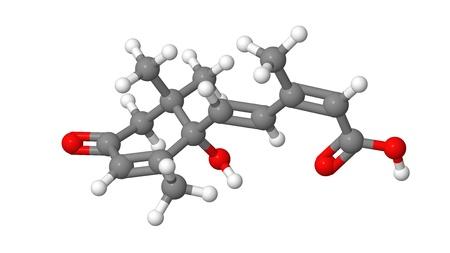 alargamiento: Hormona vegetal - �cido absc�sico - ABA - modelo molecular