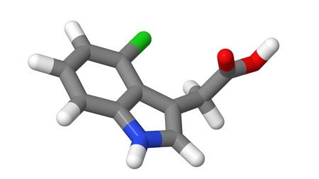 elongacion: Hormona de la planta - Auxinas - 4-cloroindol-3-ac�tico �cido - 4-Cl-IAA - palos