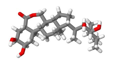 elongacion: Hormona vegetal - Brasinoesteroides - brassin�lido - Modelo de palos Foto de archivo