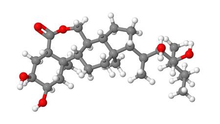 elongacion: Hormona vegetal - Brasinoesteroides - brassinólido - modelo molecular