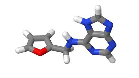 Plant hormone - Cytokinins - Kinetin - sticks molecular model Stock Photo - 17613510