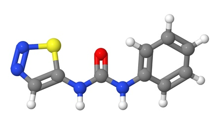 elongacion: Hormona vegetal - Las citoquininas - Thidiazur�n - TDZ - modelo molecular Foto de archivo