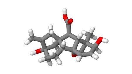 alargamiento: Hormona vegetal - giberelina - A3 - palos modelo molecular