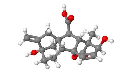 phytohormone: Plant hormone - Gibberellin - A3 - molecular model
