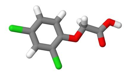 elongacion: Hormona vegetal - auxinas sint�ticas - 2-4-D - palos modelo molecular