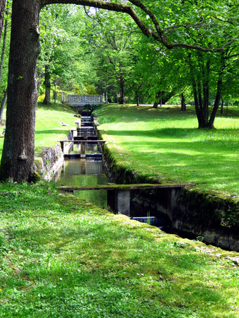 torrent: Water in a torrent in a green park