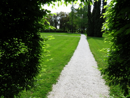 Pathway in green park