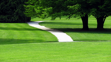 Path in green park Stock Photo