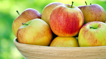 Organic apples in basket. Fresh apples in nature. Close up view.