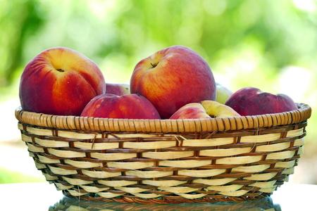 Organic peaches in basket. Fresh peaches in nature. Stock Photo