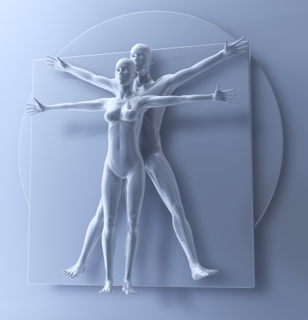 da vinci: Leonardo Da Vinci s Vitruvian Man And Woman, Homo Quadratus as a Couple, 3d rendering Stock Photo