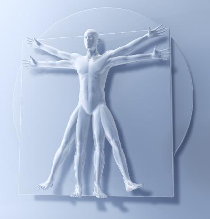 Leonardo Da Vinci s Vitruvian Man, Homo Quadratus, 3d rendering photo
