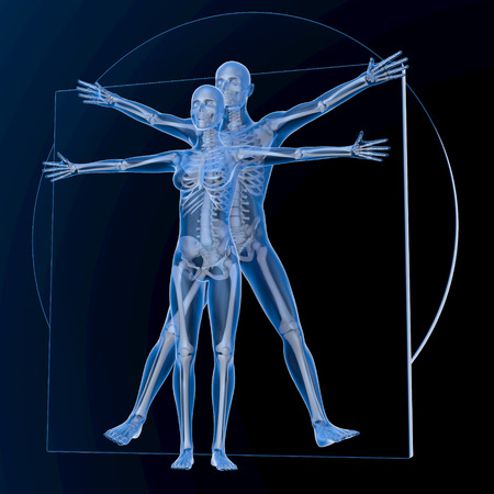 uomo vitruviano: Leonardo da Vinci Uomo Vitruviano e Donna, Coppia, blu trasparente su sfondo scuro, con le ossa, rendering 3d
