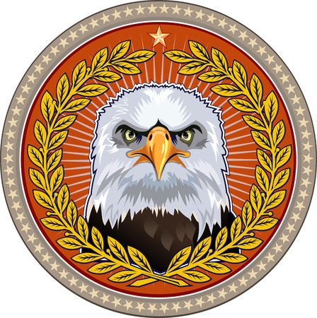 aguila calva: American Eagle  Águila calva