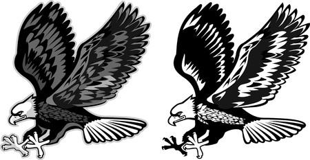 patriotic eagle: American eagle bw Illustration