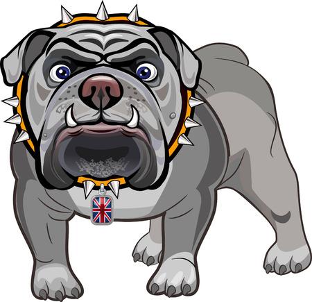 english bulldog puppy: English Bulldog and British Flag