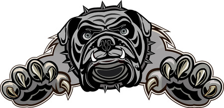 british bulldog: Jump of English Bulldog