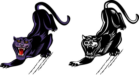Black and white and color Panther