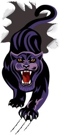 breakthrough: Panther breakthrough Paper