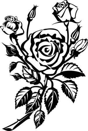 rose tattoo: Rose Tattoo. Vector illustration.