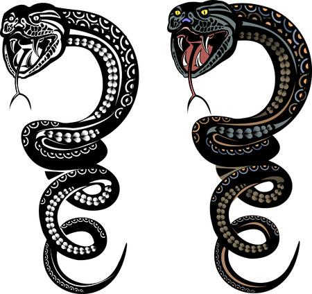king cobra: Snake BW Color