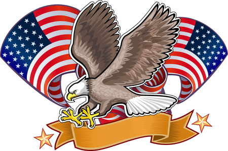eagle: American eagle with USA flags