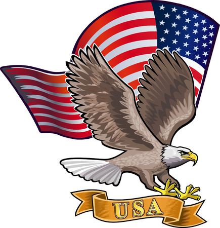 aguila americana: Águila americana con banderas de EE.UU. Vectores