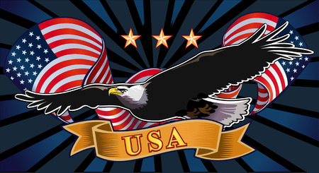 the eagle: American eagle with USA flags