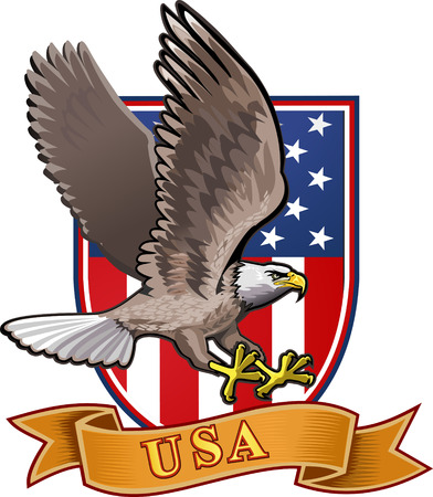 patriotic eagle: American eagle with USA flags