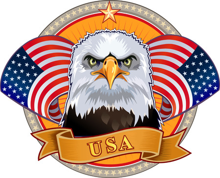eagles: American eagle with USA flags