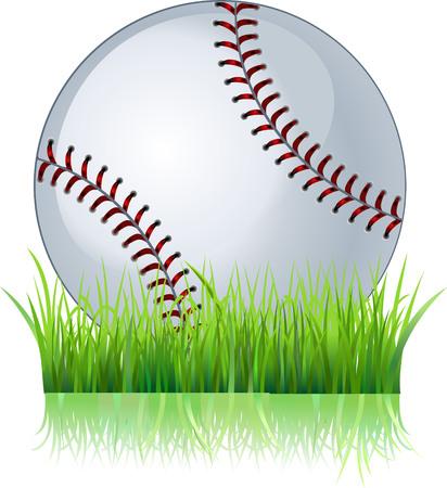 baseball ball: Baseball ball in grass Illustration