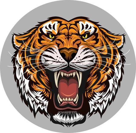 Tiger Face Ilustrace