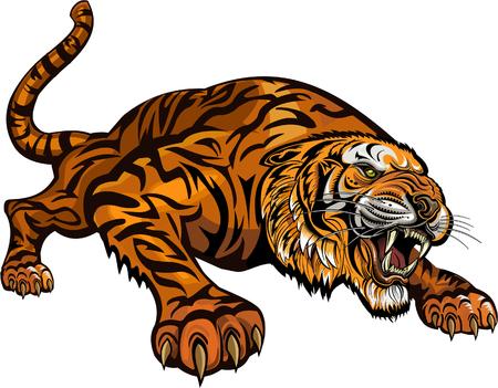Tiger Tattoo  Stockfoto - 74320013